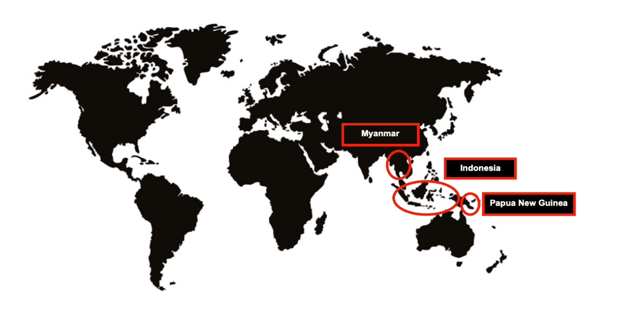 Map of world and where the No Roads Foundation works